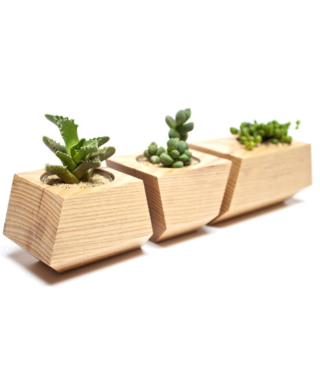 3 Pc. Solid Ash Wood Planters in Natural